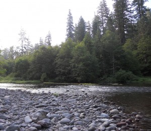 North_Fork_Middle_Fork_Willamette-sm