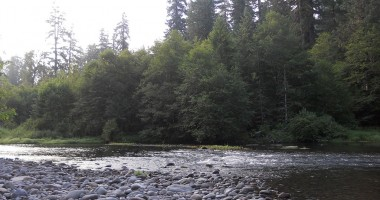 Streamer Fishing for Trout