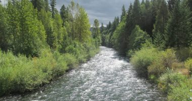 South Fork McKenzie River Diversion